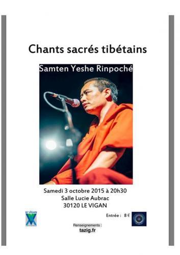 Affiche concert le vigan octobre 2015
